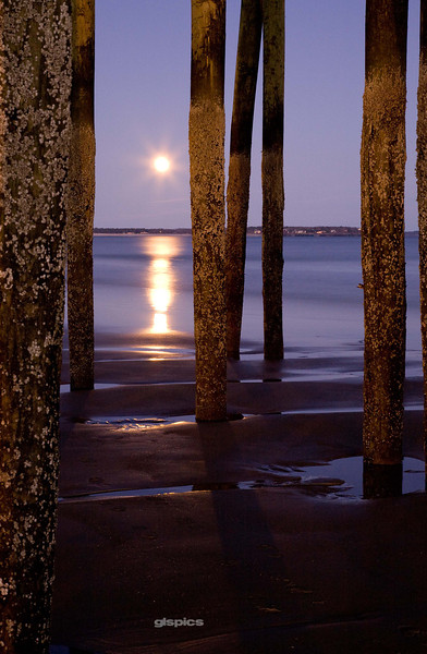 Thru the Pilings