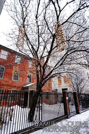 Lights in the tree in front of Longfellow House in Portland, Maine.