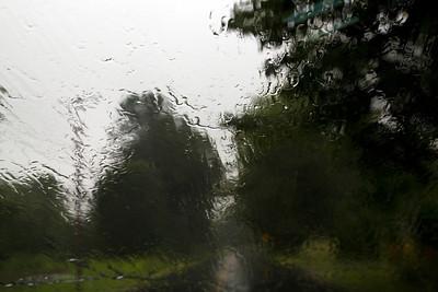 Rain C7199