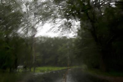 Rain C7196