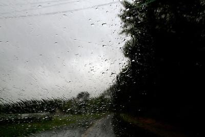 Rain C7189