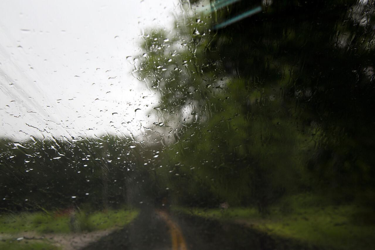 Rain C7192