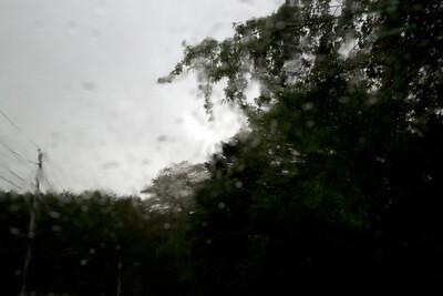 Rain C7193
