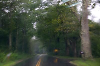 Rain C7195