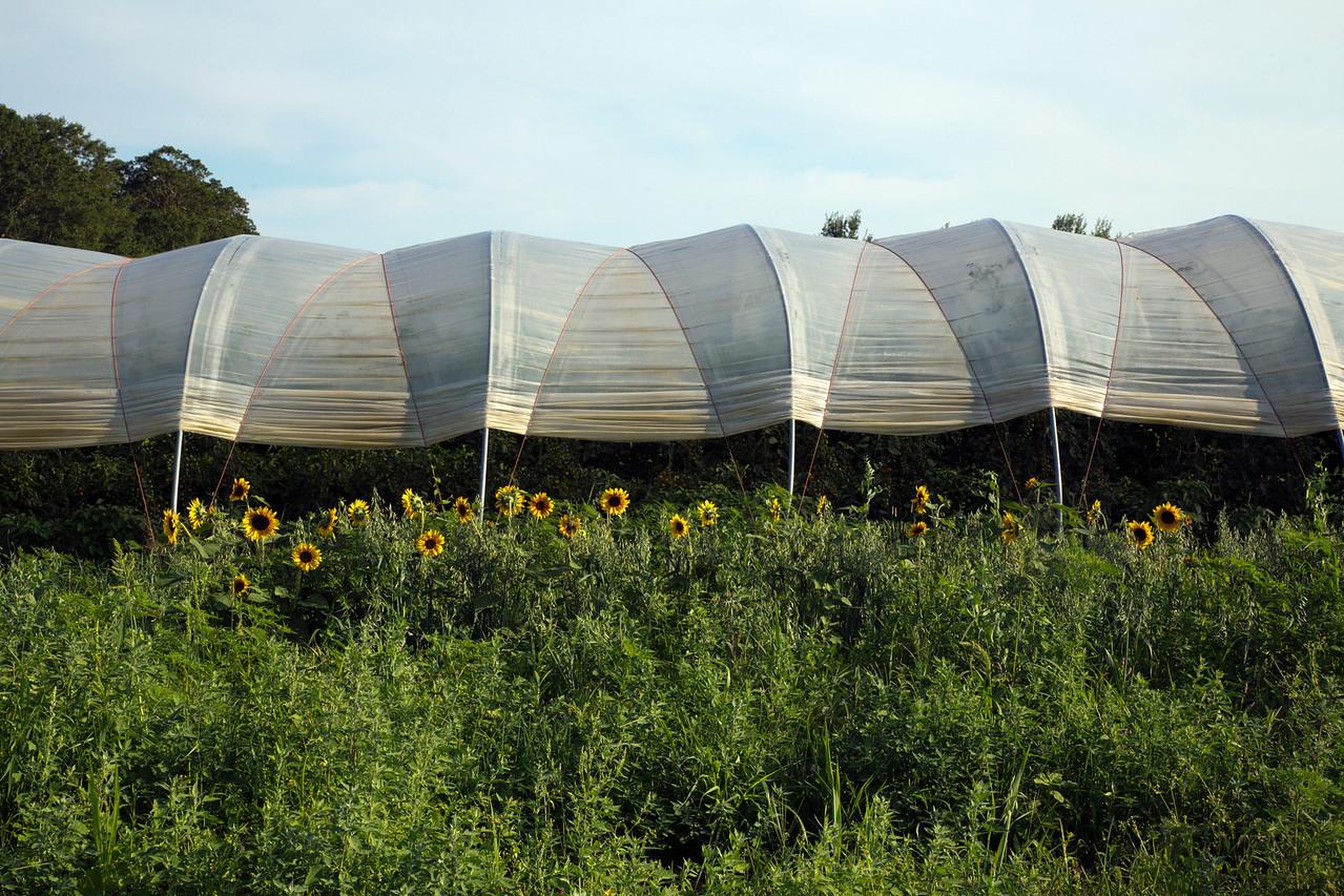 farm C7180