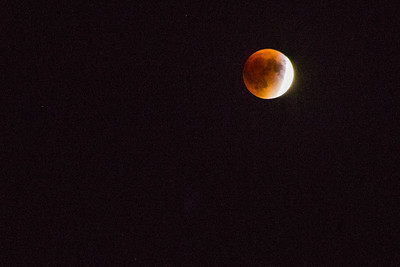 Blood Moon Lunar Eclipe, Hollis, Maine, USA