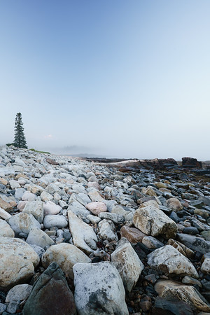 High Tide Line - Acadia National Park
