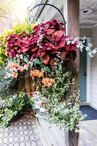 Flower Basket at our door
