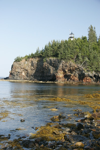 Owls Head Lighthouse Behind Trees