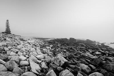 Rocky Beach / Acadia National Park