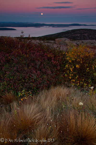 Moonrise from Atop Cadillac Mountain - Acadia National Park, Maine - D'An Holmes Glueckert - October 2013