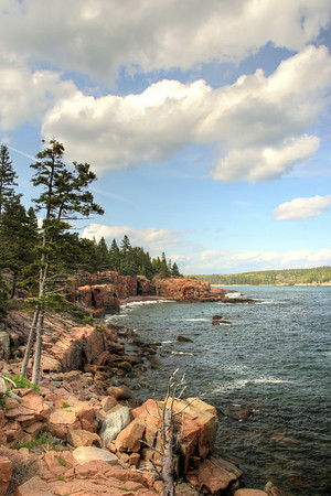 The coast of Arcadia National Park, looking back into Otter Cove.