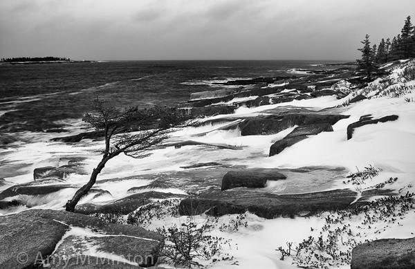 Acadia National Park, Schoodic Peninsula, Maine - February 2016