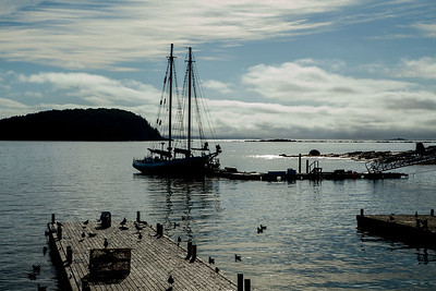 Morning Breaks in Bar Harbor