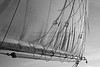 Windjammer Sail at Sunset in B&W