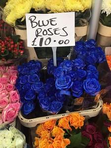 Blue Roses-London
