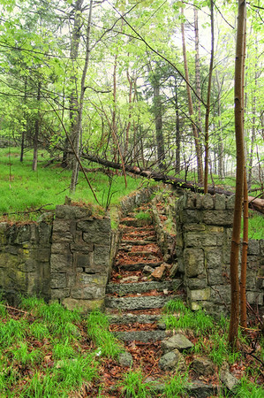These stone stairs lead up to a abandoned wooded lot that was once probably a large estate or resort in Bar Harbor.  In 1947 a fire devastated vast sections of Bar Harbor, incinerating 67 summer cottages, 5 grand hotels, and 170 homes. This is probably the only evidence of this one left.
