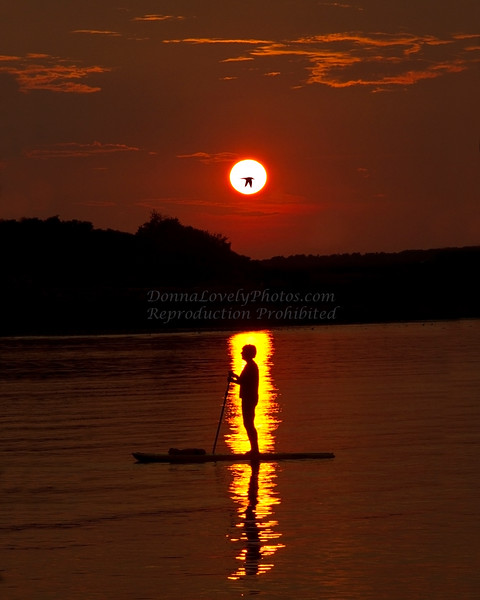 Paddleboarder in Sunset, Portland, Maine