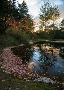 Autumn, Quarry Pond (3087)
