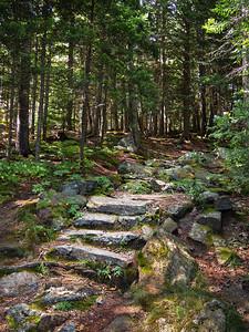 Granite Steps, Camden Hills State Park, Camden, Maine (43933)