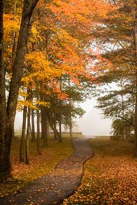 Autumn Path in Park with Fog, Yarmouth, Maine (3748)