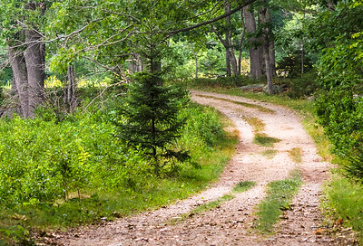 {calendar}  Timber Point Trail, Biddeford, Maine  (00102-H)