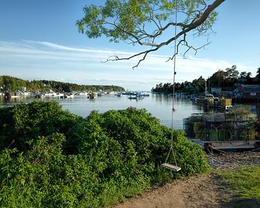 Tree Swing, Bailey Island, Harpswell, Maine  (31553)
