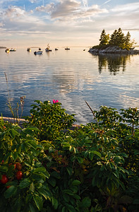 Later Summer Afternoon, Lookout Point, Harpswell, Maine  (99040)