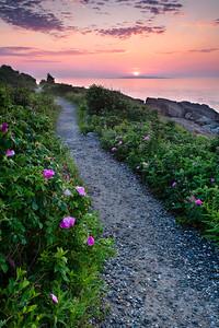 Giant Stairs Trail, Bailey Island, Harpswell, Maine (6494)