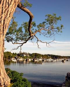 Mackerel Cove on Bailey Island, Harpswell, Maine  (31550)