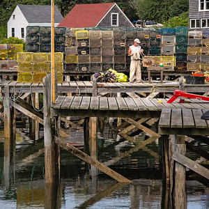 Lobsterman, Port Clyde, Maine (87316)