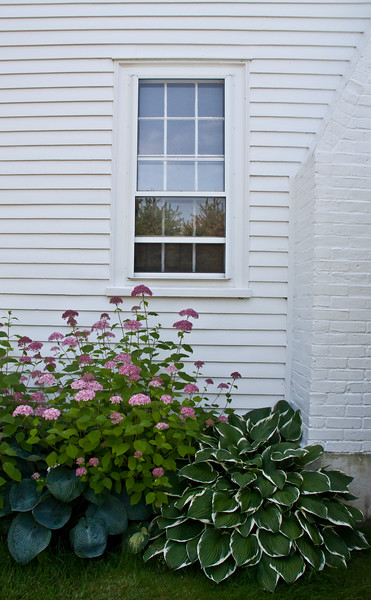 """Pink hydrangea with window and chimney of white house, Ancient Augusta, Phippsburg Maine For more garden flowers of Maine visit <a href=""""http://www.robinrobinsonmaine.com/MaineBOTANICALSwildflowers/BOTANICALS/13997293_xThqdt"""">http://www.robinrobinsonmaine.com/MaineBOTANICALSwildflowers/BOTANICALS/13997293_xThqdt</a>"""