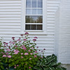 "Pink hydrangea with window and chimney of white house, Ancient Augusta, Phippsburg Maine For more garden flowers of Maine visit <a href=""http://www.robinrobinsonmaine.com/MaineBOTANICALSwildflowers/BOTANICALS/13997293_xThqdt"">http://www.robinrobinsonmaine.com/MaineBOTANICALSwildflowers/BOTANICALS/13997293_xThqdt</a>"