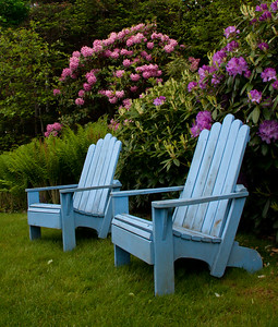 periwinkle blue Adirondack chairs in a garden with purple rhododendrons, coastal Phippsburg Maine garden in early summer For more garden flowers of Maine visit http://www.robinrobinsonmaine.com/MaineBOTANICALSwildflowers/BOTANICALS/13997293_xThqdt