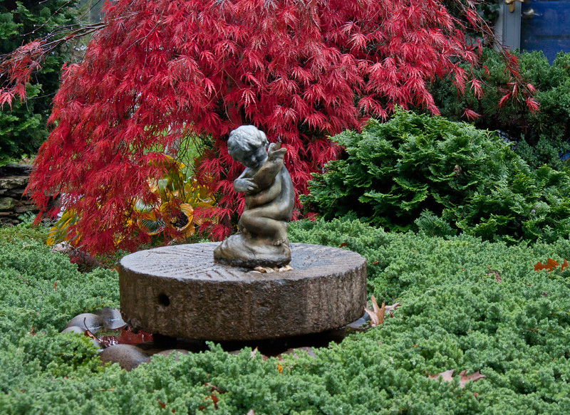 "garden fountain of child holding a fish. The fountain sits on an antique mill stone which is in a green pool of juniper. dwarf, false Cypress on the right and Japanese maple leaves, Inaba Shidare For more garden flowers of Maine visit <a href=""http://www.robinrobinsonmaine.com/MaineBOTANICALSwildflowers/BOTANICALS/13997293_xThqdt"">http://www.robinrobinsonmaine.com/MaineBOTANICALSwildflowers/BOTANICALS/13997293_xThqdt</a>"