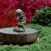 "Garden statue, boy with fish,  coastal Maine Garden, Phippsburg, Maine, fall, autumn, juniper Blue Rug, Japanese maple, Shidare Inaba in red, fall color For more garden flowers of Maine visit <a href=""http://www.robinrobinsonmaine.com/MaineBOTANICALSwildflowers/BOTANICALS/13997293_xThqdt"">http://www.robinrobinsonmaine.com/MaineBOTANICALSwildflowers/BOTANICALS/13997293_xThqdt</a>"