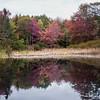 Hidden Ledges pond, Phippsburg, Maine October foliage