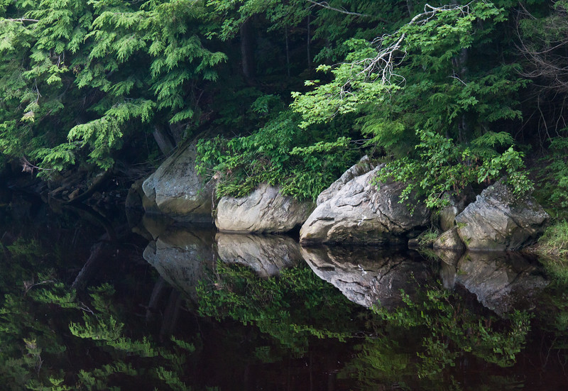 Boulder reflections in water with Hemlock and Cedar trees, Phippsburg Maine, Sam Day Hill Road. This is a lovely, serene scene