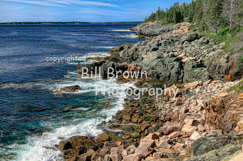 Acadia National Park Shoreline