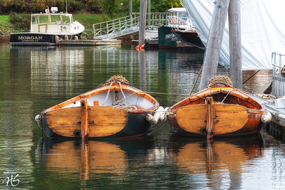 A Beautiful Couple in Camden Harbor, ME