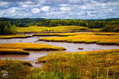 Bold Coast Marshland