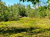 Eastern Trail, Kennebunk to Biddeford ME