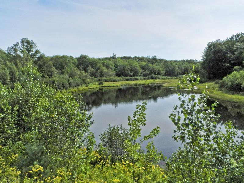 Plains Pond, Kennebunk Plains, Kennebunk ME