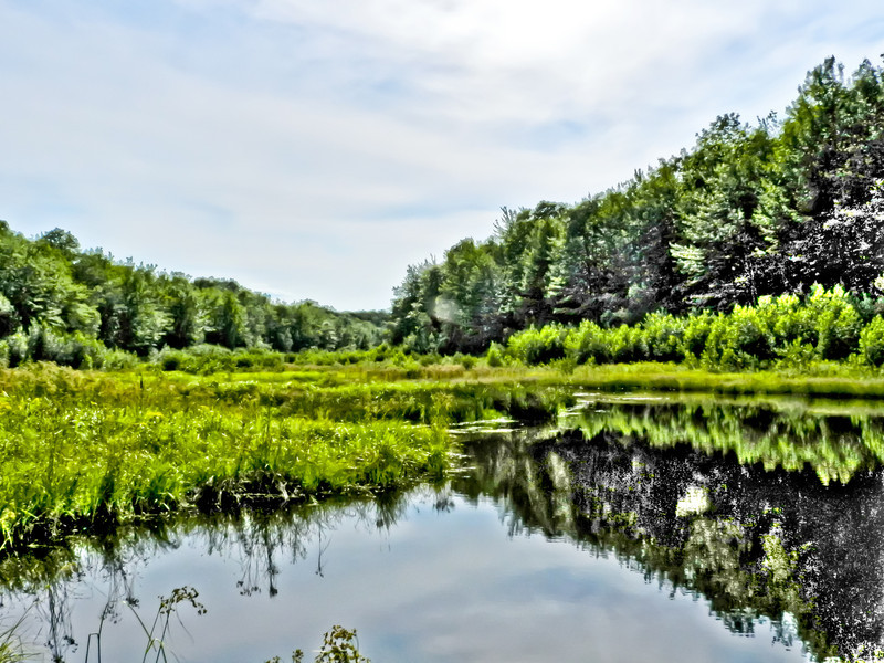 Plains Pond, Kennebunk Plains, Kennebunk ME