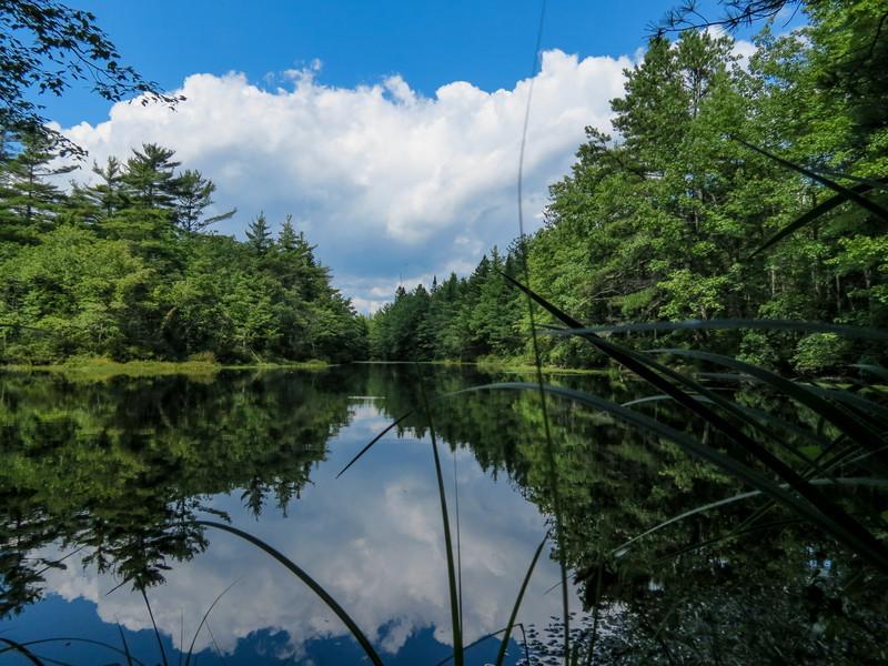 Back Creek Pond #2, Rt 9, Kennebunk ME
