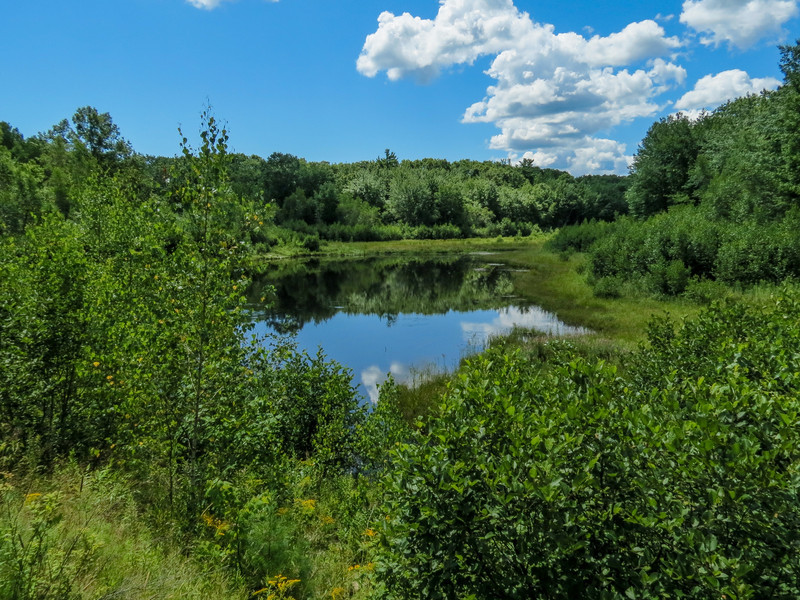 Kennebunk Plains Pond, Kennebunk ME