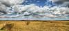 Kennebunk Plains, Kennebunk ME