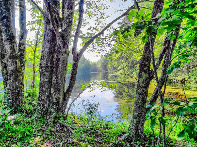 Back Creek Pond #2, Rt. 9, Kennebunk ME