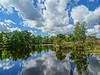 Kennebunk Plains. Day Brook Pond.