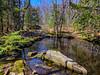 Batson River, Emmons Preserve, Kennebunkport ME